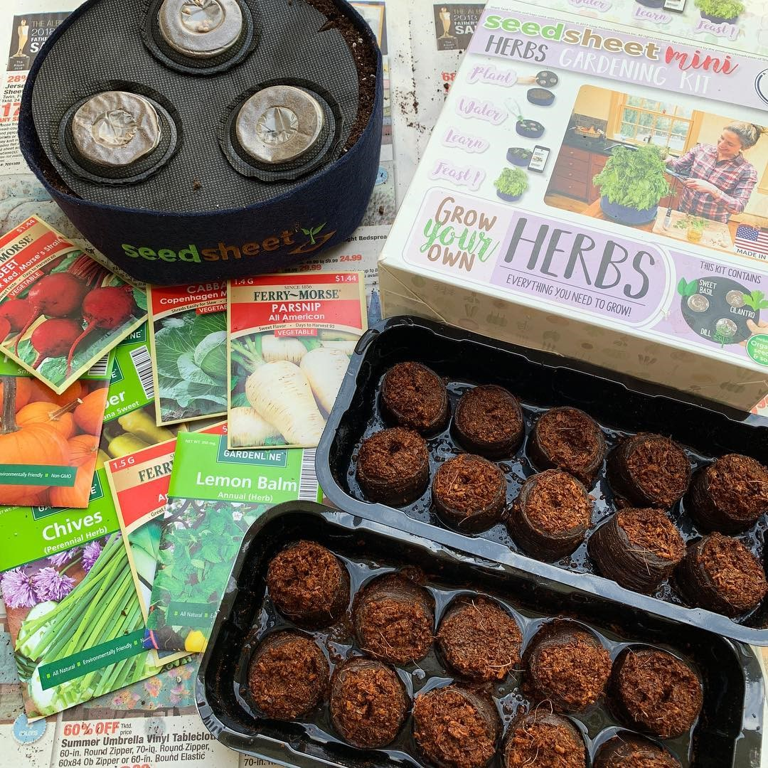 Seedsheets Review 2021: Is It Really Good Gardening Kits? 2